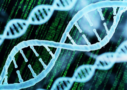 Image of DNA model, with vertical code in green text in the background.